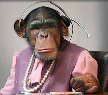 monkey-headset